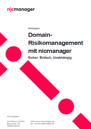 Risikomanagement Whitepaper Vorschau